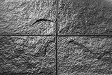 Japanese ceramic tile Photo:Patara